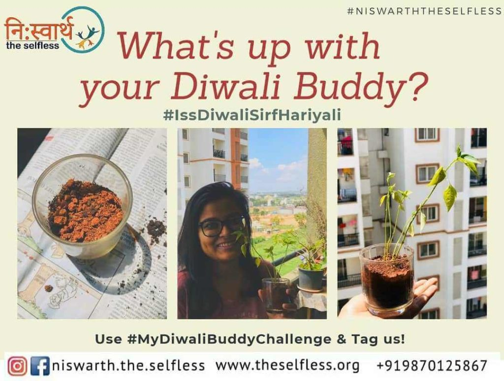 Diwali Buddy - Eco-friendly Diwali 2019