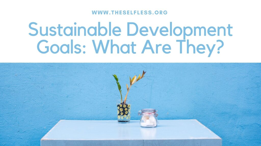 What are Sustainable Development Goals?
