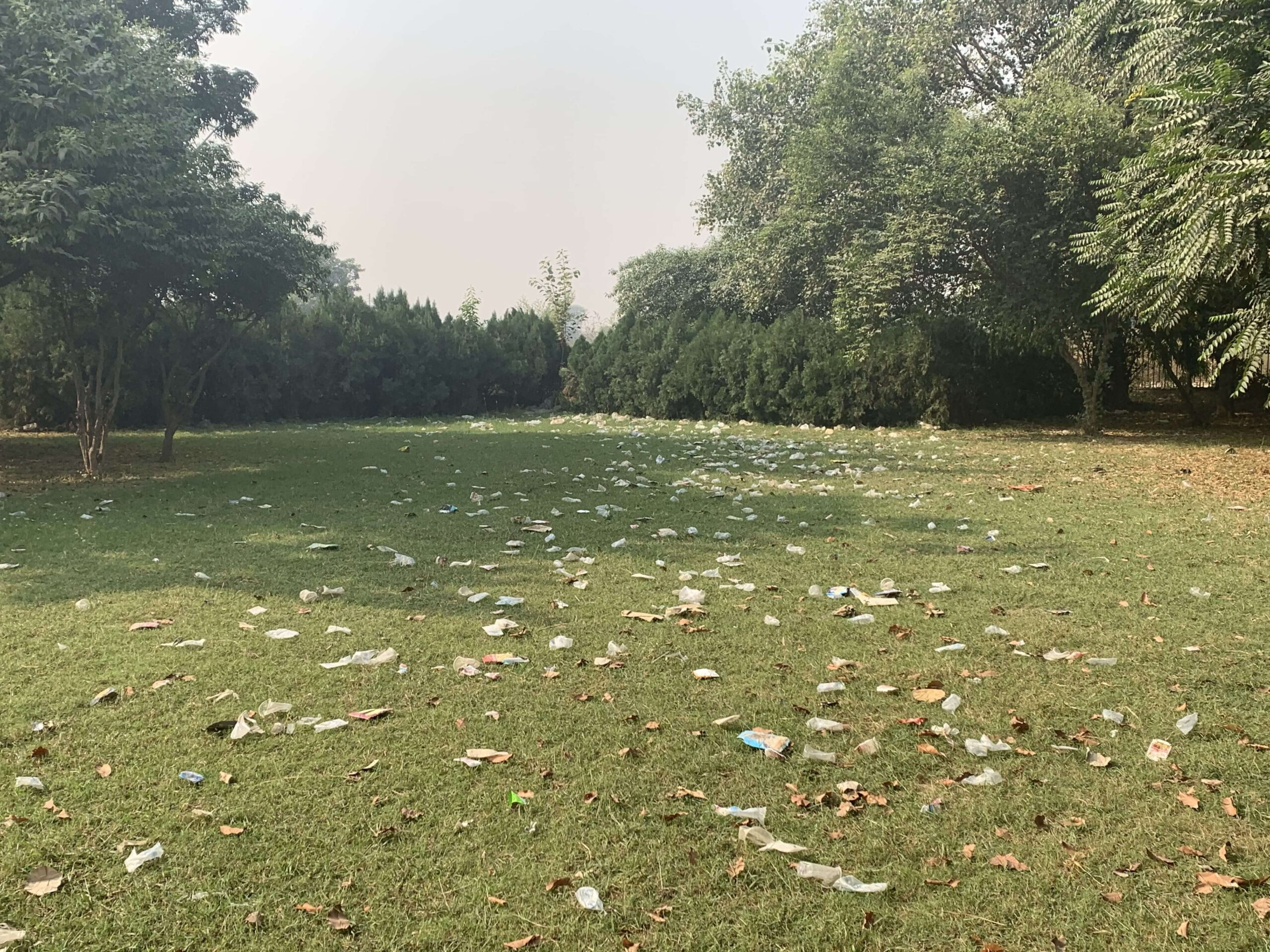 October 25 2020 - Central Park Cleanliness Drive - 1