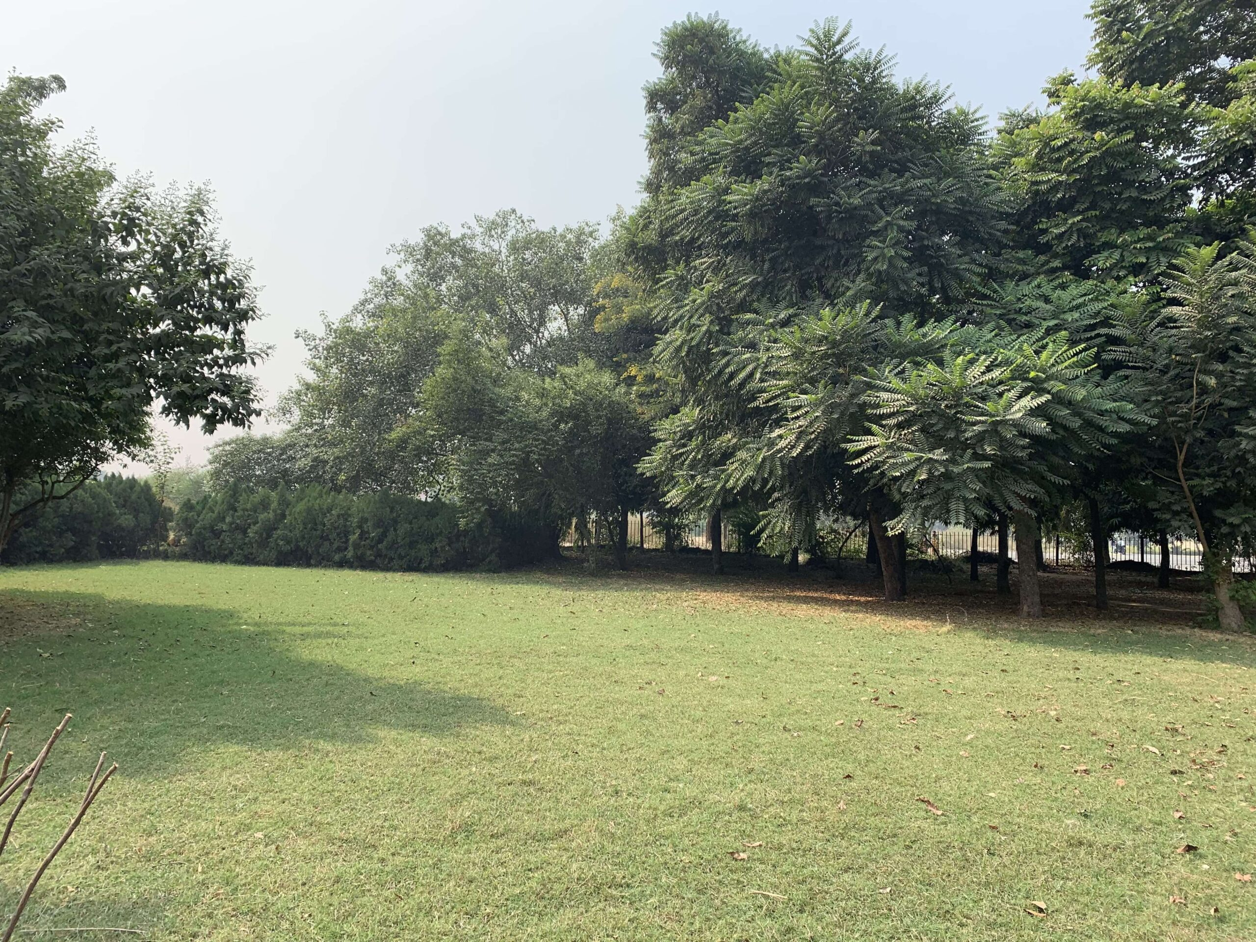 October 25 2020 - Central Park Cleanliness Drive - 2